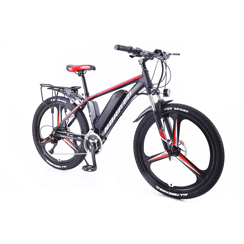 21 speed electric bike 48V 250W 26inch ebike lithium battery electric bicycle electric bike from china