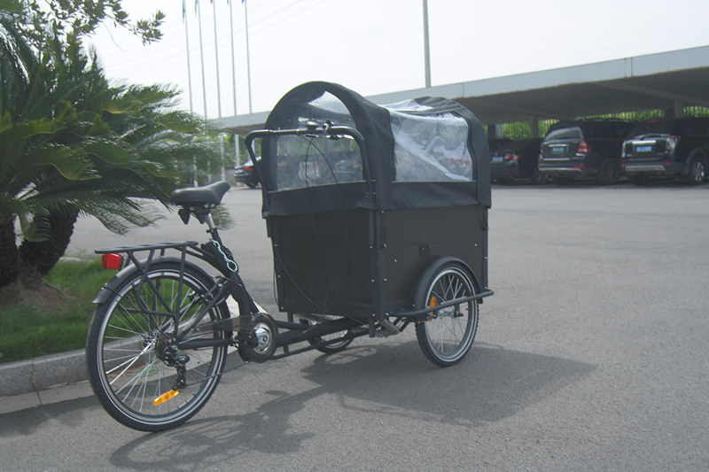 family non-electric cargo bike with front box and rear one wheel pedal city bicycle trike dutch model UB-9019