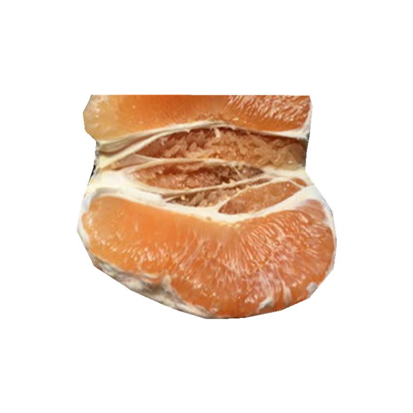 Доступная цена, Африканский пупок orangemini, электрический автомобиль orangedred orange для изготовления свечей, золотой свежий помело на продажу