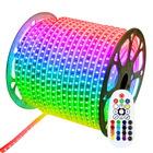 240V 230V 110V 220V RGB 5050 colour change led strip lights with remote