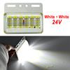 White + White 24V