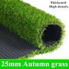 25ミリメートル秋の草