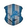 26. Detroit Lions