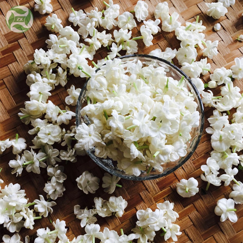 Jasmine Hydrosol Organic Pure & Natural Manufacturer Supply Hydrosol Plant Extract Floral Water Hydrolat New