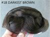 #1B DARKEST BROWN
