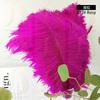 012# Rosy