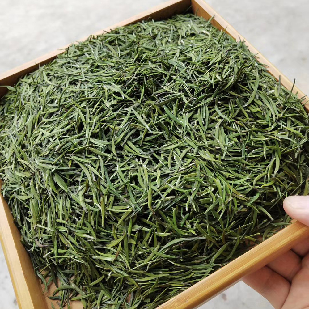 Free sample Chinese healthy and slimming yellow tea, Junshang Yinzheng with factory price