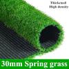 30ミリメートル春草