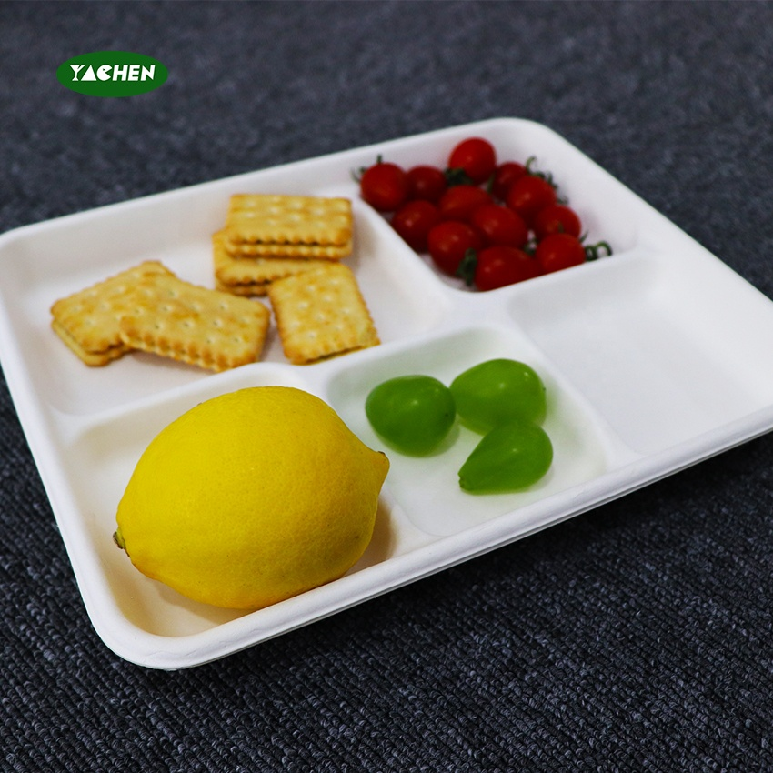 YACHEN hot selling Compostable Disposable sugarcane plate Food Packaging  5 compartment tray for dinner