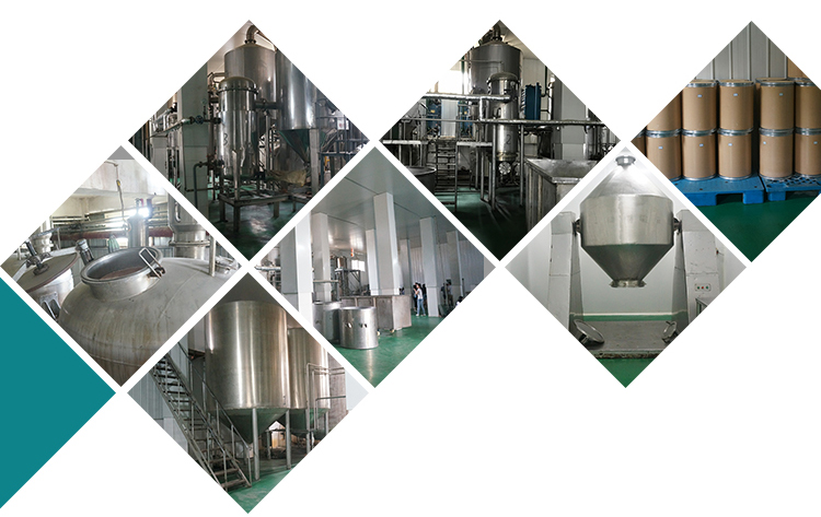Our Factory-3.jpg