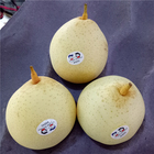 Pears Pear Pear 2020 New Crop Popular Ya Pears Pear Fruit For Export