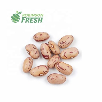 Peru Grown Fresh Pinto Beans Dry Robinson Fresh MOQ 50 LBS Quick Delivery in US