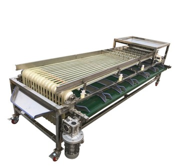 Tomato / passion fruit / maybush /haw / Apple /pear grader sorter selector machine