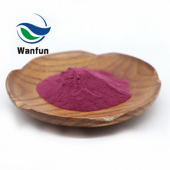 100% Organic Dried Red Juice Powder Sugar Beet Root Extract Beetroot Powder