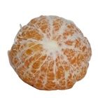Fresh Factory Direct Sale Of Fresh Citrus With Sweet Taste Medium In Size And Rich In Organic Matter