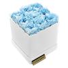 M austin:sky blue+white box