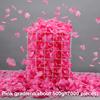 Pink gradient  500g
