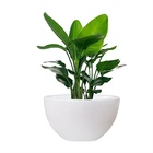 Large Garden Large Outdoor Standing Vase Big Garden Plant Pots White Indoor Flower Pot Planter
