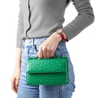 ISO BSCI Factory Small MOQ unique texture ostrich party bag clutch purse evening bag PU leather ladies clutch bag