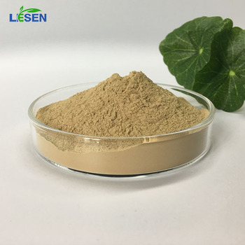 Organic Herb Extract Lion's Mane Extract 10:1 Powder