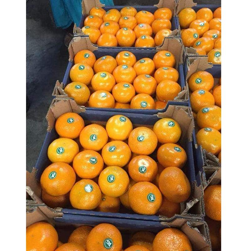 Сладкие свежие фрукты, оранжевый мандарин, апельсин, цитрусовые