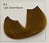 8.3 Light Golden Blonde