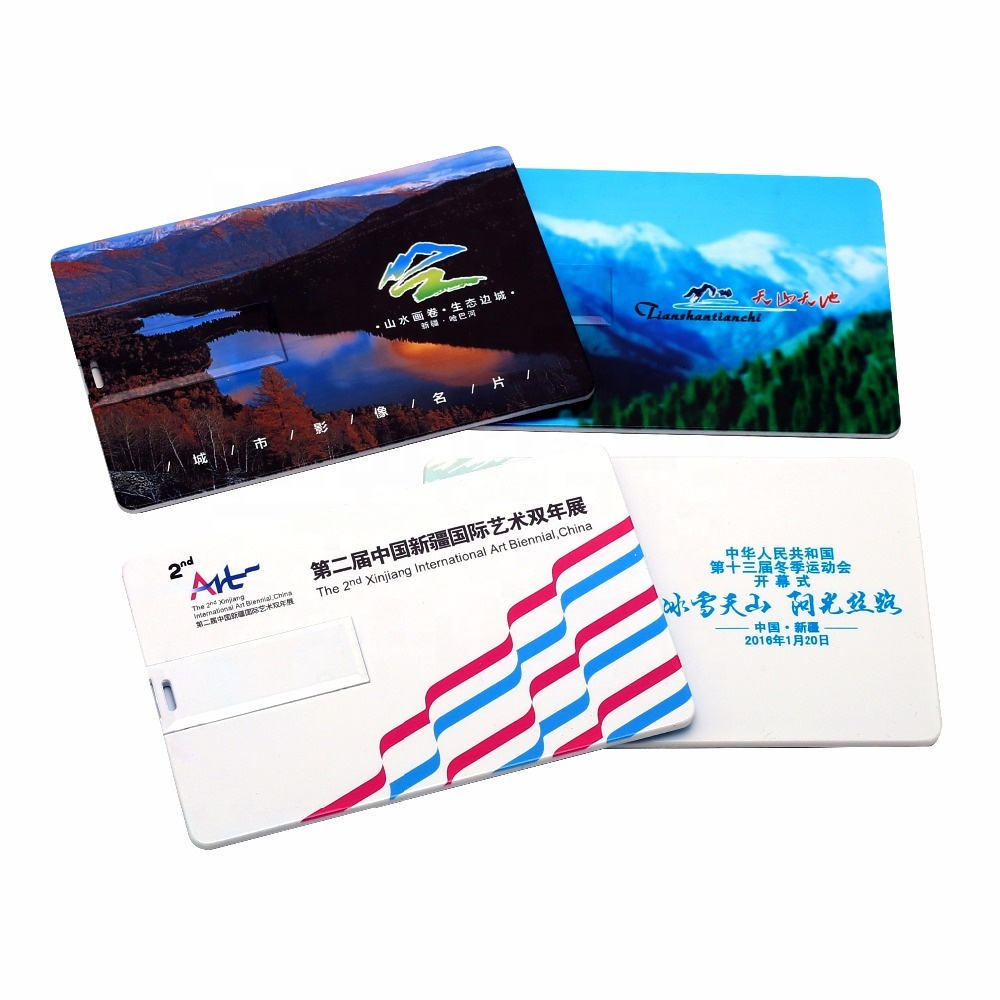 Custom Logo 2GB 4GB 8GB 16GB 32GB 64GB USB Stick Business Card USB Flash Drive - USBSKY | USBSKY.NET