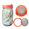 Orange glass sprouting jar