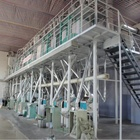 hot sale in malaysia corn flour milling machinery / advanced technology maize flour mill