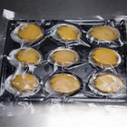Ablone Abalone Abalone Competitive Price Fresh Frozen Ablone Seafood Abalone Frozen Green Abalone