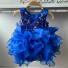 Blue2025