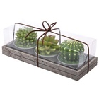 Candles Wedding Handmade Delicate Succulent Cactus Candles For Birthday Party Wedding Spa Home Decoration