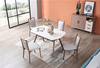 Dining table and chair' s color