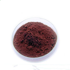 Natural Competitive Price Good Natural Antioxidants High Quality Health Additive Of Grape Seed Extract OPC