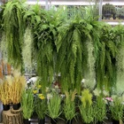 Plant Grass Plants Artificial Green Hot Selling Artificial Hanging Plant Green Grass Long Fern For Outdoor Decoration