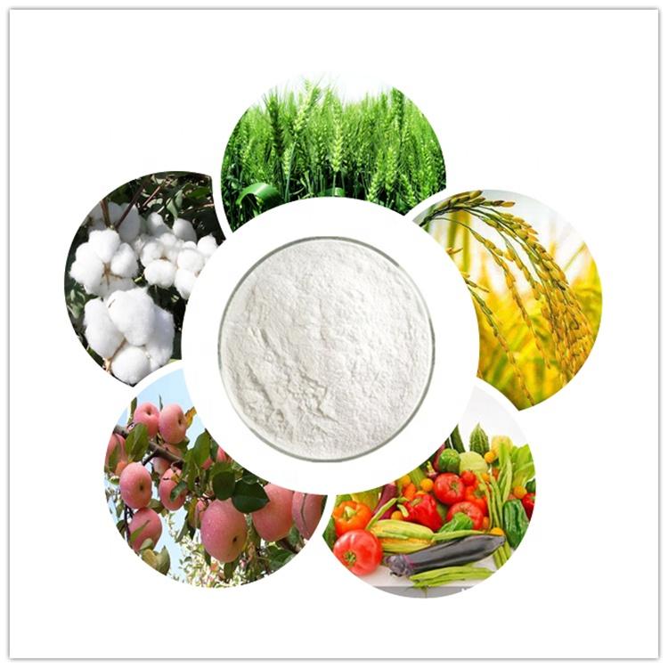 Органический фунгицид, цена, карбендазим 98% TC, формула фунгицида