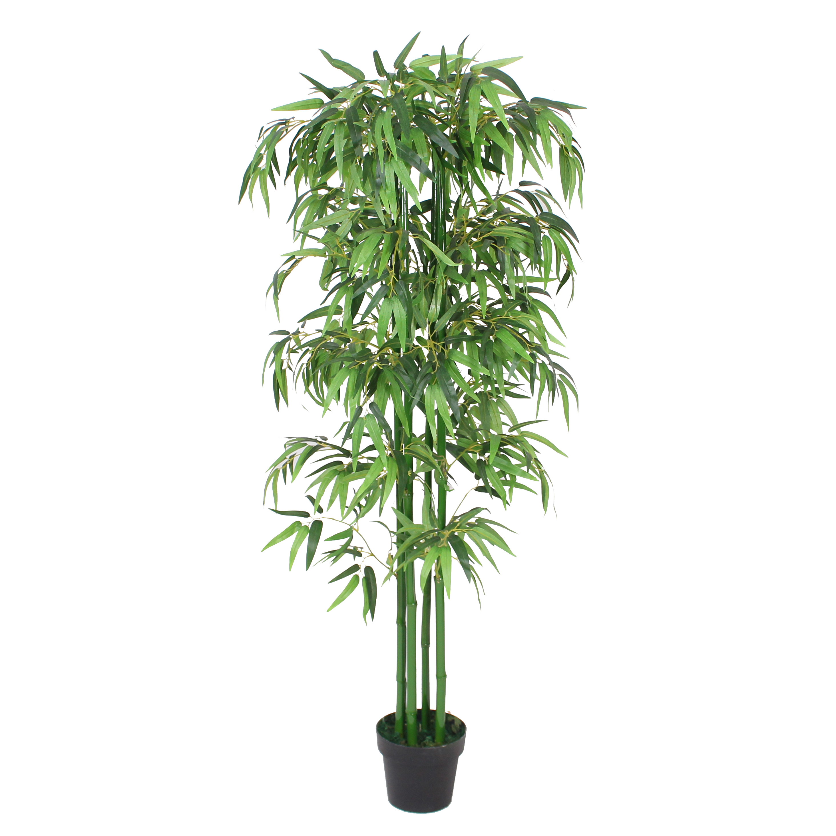 2020 Hot Sale Cheap Indoor Decorativos Plantas Artificiais Plantas De Bambu Chines Sorte De Bambu Interior Buy Chinese Bamboo Plants Lucky Bamboo Indoor Cheap Artificial Plants Dry Decoration Bamboo Product On Alibaba Com