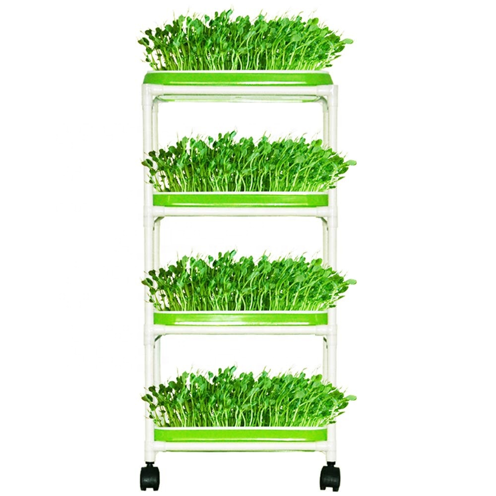 plastic hydroponic seedling tray flat bean sprouts seedling tray