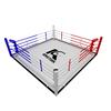 5m floor boxing ring