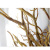 Wood Sticks Roer Sticks Craft Sticks Hout Decoratieve Boom Takken