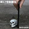 New Skull No. 17