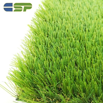 Natural good looking landscaping grass for garden