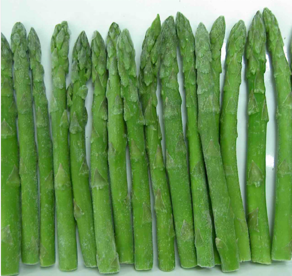 Grow Asparagus Planting Asparagus Roots From White Green Purple Asparagus Seeds High Yield Of 2500kg 667m2 View Grow Asparagus Fairyvalley Product Details From Shanghai Fairy Valley Industrial Co Ltd On Alibaba Com