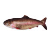 Electric rainbow trout