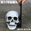 New Skull No. 12