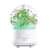 US plug-Green  babysbreath