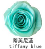 Tiffany blauw
