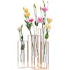Desktop Hydroponics Vase
