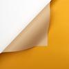 052 laranja + Botão de Ouro