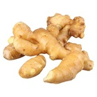 China wholesale GAP new Fresh Ginger